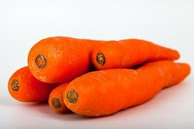 1500 TENDERSWEET CARROT Deep Orange Red Daucus Carota Vegetable Seeds *Comb S//H