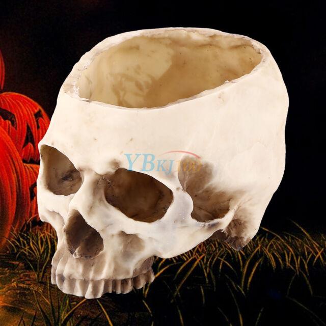 Resin Human Skull Head Design Flower Pot Planter Bonsai Home Bar