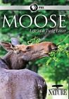 Nature Moose - Life of a Twig Eater 2016 Region 1 DVD