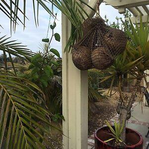 New Fishnet Sack of Coconuts Smokin Tikis Hawaii tiki bar mug decor 618