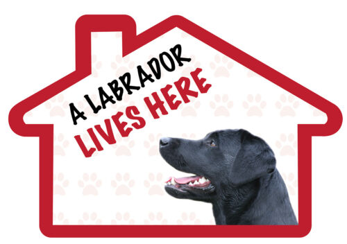 BLACK LABRADOR Lives Here Vinyl Dog House Decal Sticker Pet Animal Lover