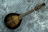 Gold Tone Gm-12+ 12-string Acoustic-electric Mandolin For Guitarists W/ Case
