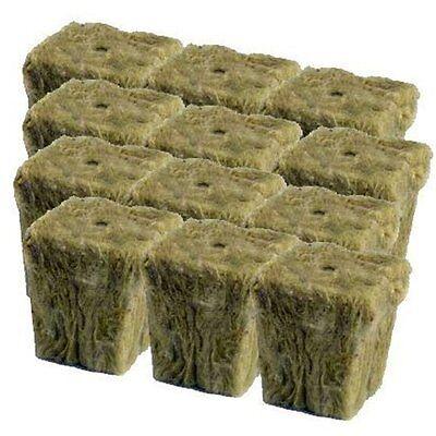 "Grodan 1"" x 1"" - 12 count - rockwool stonewool hydroponics starter cubes"