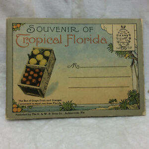 Vintage-Souvenir-Postcard-Folder-Homeward-Bound-Florida-unused-4-1-4-034-x-3-1-8-034