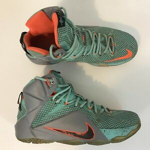 fd8d140774c Nike Air Max Lebron 12 XII NSRL Miami Dolphins Size 10