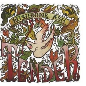 WISHBONE-ASH-TENDER-New-amp-Sealed-CD-Rock-Inc-Top-OF-The-World