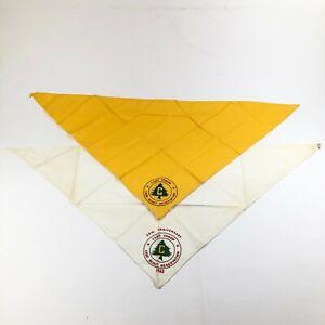 Lote-de-2-BSA-Boy-Scouts-Of-America-Campamento-Cowan-Amarillo-Azul