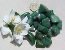 15 Stunning Green Buddstone (African Jade) Crystal Small Tumblestones - Verdite