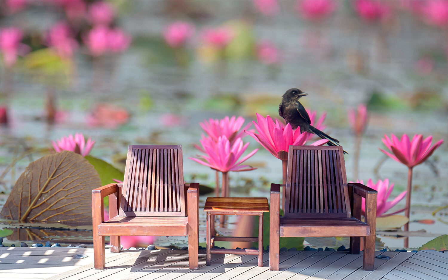 3D pond Lotus Bloom bird Wall Paper Print Decal Wall Deco Indoor wall Mural