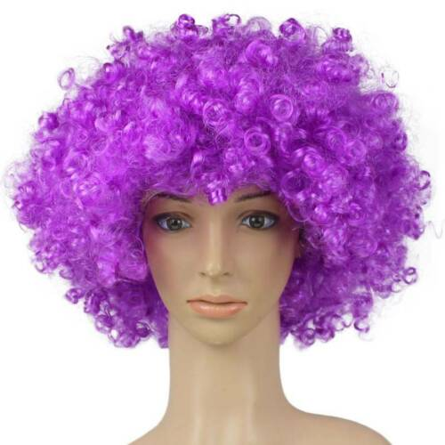70s Curly Afro Fancy Dress Wig Party Clown Funky Disco Hair Costume Mens Womens
