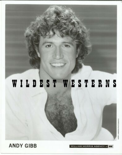 ANDY GIBB rare VINTAGE Original PHOTO hairy chest portrait