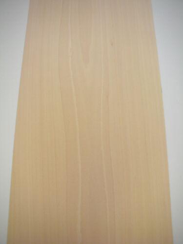 IRON-ON BEECH WOOD VENEER 250cm x 30cm