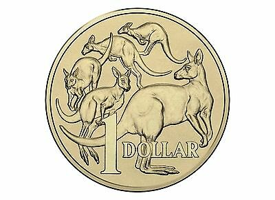 2015  Mob Of Roos Kangaroo $1 Australia Uncirculated Coin MOR One Dollar