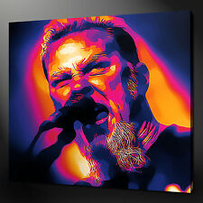 JAMES HETFIELD METALLICA MUSIC IMMAGINE FOTO STAMPA SU TELA 30.5cmx30.5cm