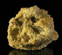 SUPERB Fine GOLD Mineral Specimen, Prospect near Mont Laurier, QC, Canada