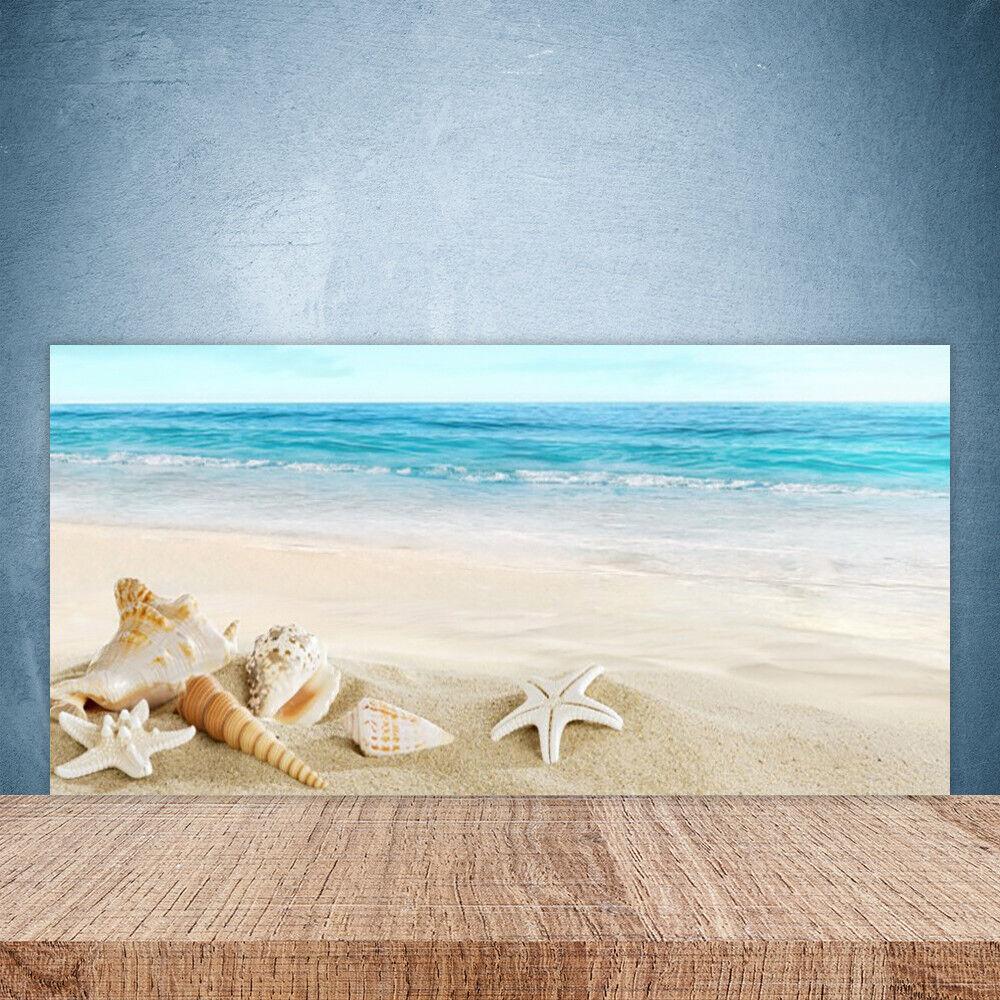 Crédence de cuisine en verre Panneau Paroi 100x50 Coquillages étoile De Mer