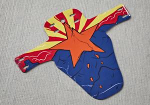 NEW!!! MTB Mountainbike Fender Arizona flag