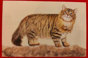 Hand-Painted-Cat-Animal-Miniature-Painting-India-Art-on-Synthetic-Ivory