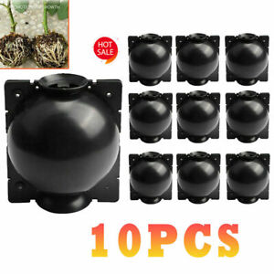 10x-Plant-Rooting-Ball-Grafting-Rooting-Box-Breeding-Case-Plant-Root-Growing-Box
