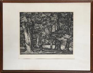 Luigi Lucioni, Tree Tapestry, Etching, signed in pencil