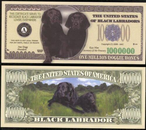 LOT OF 25 BILLS BLACK LABRADOR MILLION DOLLAR DOG MONEY