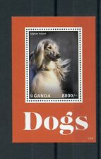 Uganda 2013 MNH Dogs I 4v S/S Pets Afghan Hound