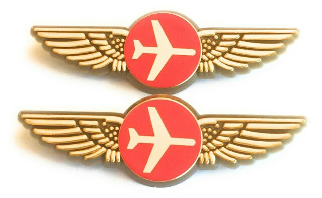 Airlines Wings Kids Airplane Pilot Costume 2 Gold Pins