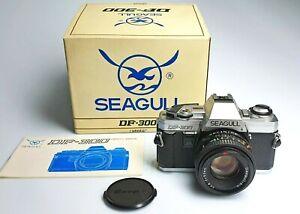 SEAGULL-DF-300-con-Seagull-50-1-8