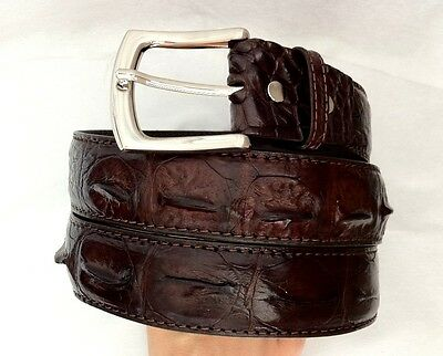 New!! REAL BIG CROCODILE ALLIGATOR HORNBACK SKIN LEATHER MENS BELT BROWN