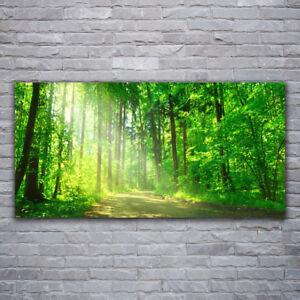 Tulup Leinwand-Bilder Wandbild Canvas Kunstdruck 120x60 Wald See Natur