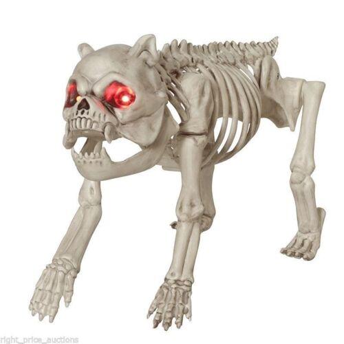 NEW Halloween Life Sized Dog Skeleton with LED Light Up Eyes Scary Spooky