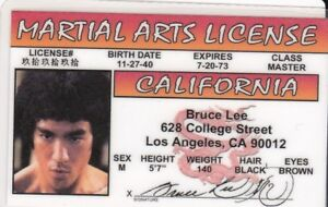 Details about Martial Arts fun Novelty Drivers License - Karate - fun fake  i d  card