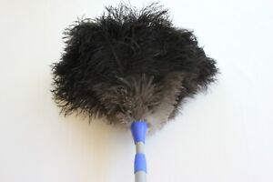 Compact-2-piece-ostrich-feather-duster-first-grade-feathers-extends-60-80cm