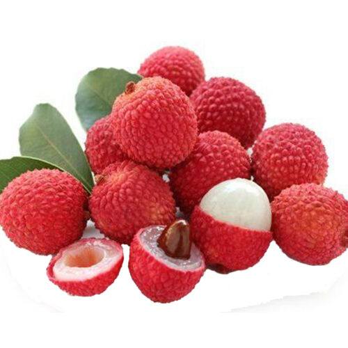 10 Lychee Seed Fresh Subtropical Outdoor Fruit Tree Rare Sweet Litchi Chinensis