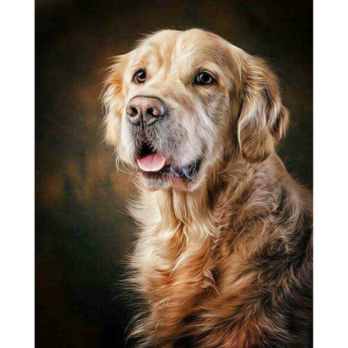 Full Drill Diamond Painting Kit Like Cross Stitch The Lovely Dog Puppy ZY132D