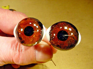 a pair vintage solid Glass Eyes size 31 mm teady bear taxidermy age 1910 Art  A2