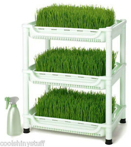Sproutman-039-s-Soil-Free-Wheatgrass-Grower-Sprouter-SM-350