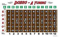 Dobro Fretboard Chart Resonator Guitar Poster A Tuning Alt Notes