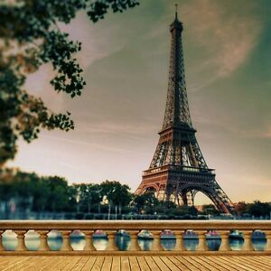 torre eiffel 10 x10 cp backdrop computer printed scenic background