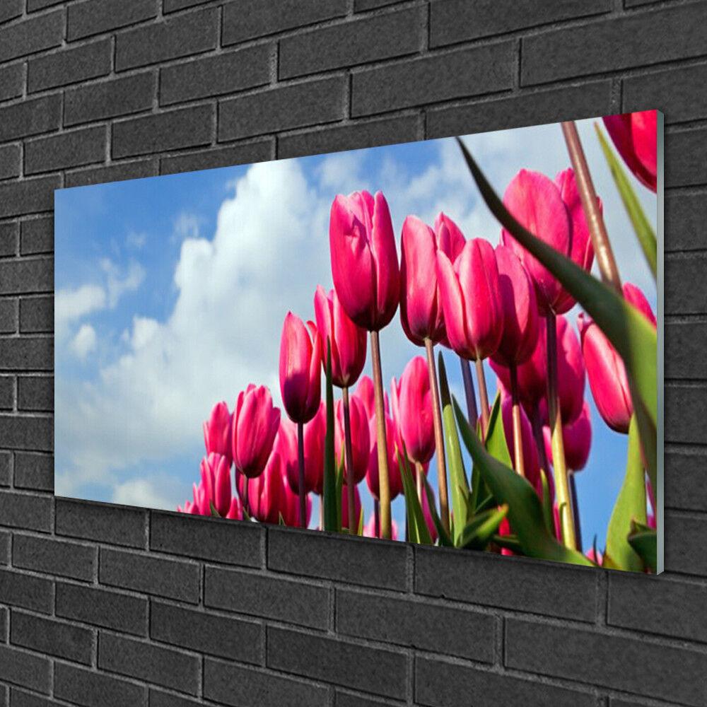 Image sur verre Tableau Impression 100x50 Floral Tulipe