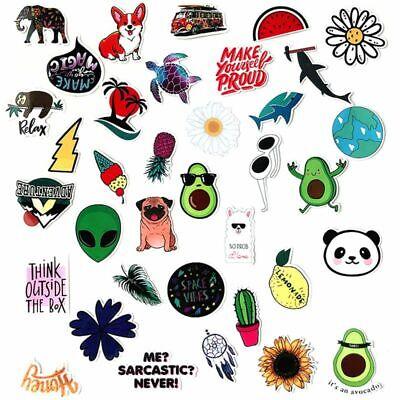 Kawaii Aloe Vinyl Sticker・Waterproof Stickers・Water Bottle Stickers・Car Stickers・Laptop Stickers・Weatherproof Stickers