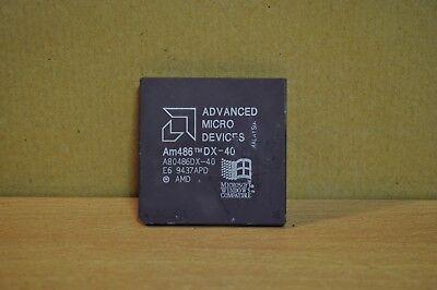 GOLD A80486DX-40 Am486 DX-40 Vintage CPU 486DX