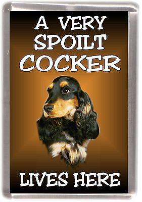 """Gordon Setter Dog Fridge Magnet  /""""A VERY SPOILT ....LIVES HERE /"""" by Starprint"""