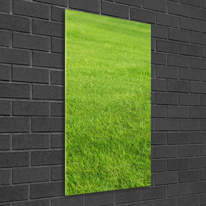 Immagine muro ARTE-STAMPA su duro-vetro ad alta Kant 50x100 verde Erba
