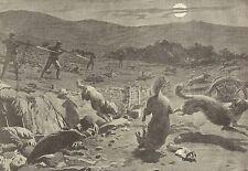 A1152 Gli orrori della guerra russo-giapponese a Mukden - Stampa Antica del 1905
