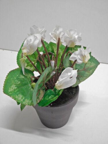 Alpi le violette seta fiore Arte Pianta H 18 cm BIANCO ungetopft 332402-40 f51