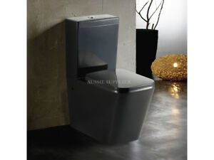 Toilet Suite Ceramic Back to Wall Wash Down P or S Trap Soft Close Seat