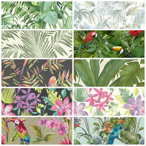 tropical jungle wallpaper leaf palm leaves trees birds parrots wild colourful ebay. Black Bedroom Furniture Sets. Home Design Ideas