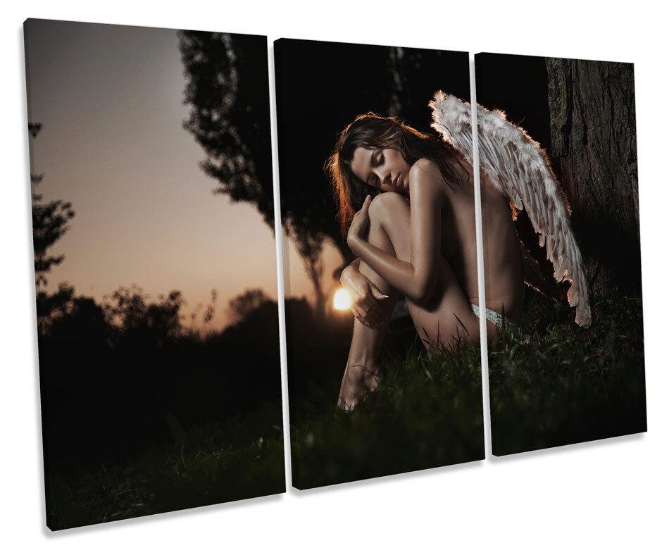 Fallen Angel Wings Sexy TREBLE CANVAS WALL ART Box Framed Picture