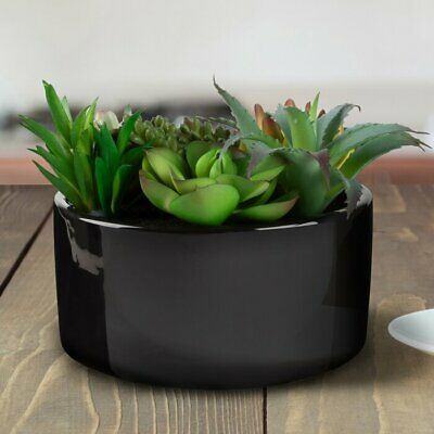 7 Piece Assorted Faux Agave Succulent In Pot Set Ebay